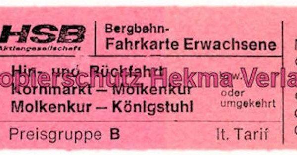 Heidelberg Bergbahn - Fahrkarte für Erwachsene