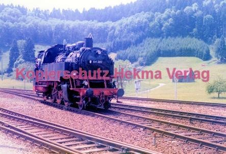 Birkenfeld (Nahe) Eisenbahn -Lok Nr. 64 289 - Bild 1