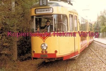 Karlsruhe Straßenbahn - Strecke Daxlanden-Rappenwört - GlTw. Nr. 217 - 3