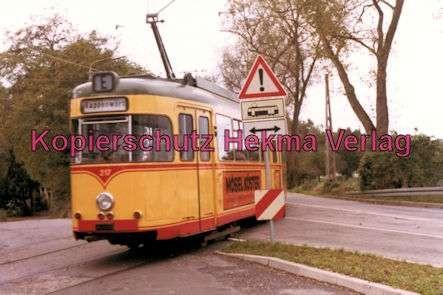 Karlsruhe Straßenbahn - Strecke Daxlanden-Rappenwört - GlTw. Nr. 217 - 5
