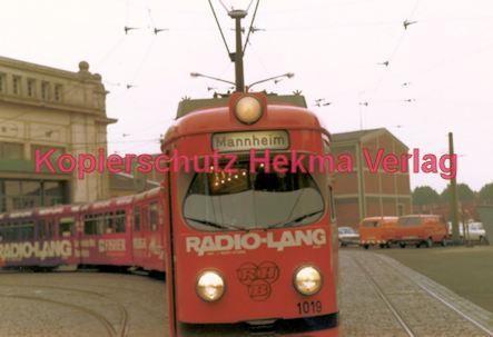 Ludwigshafen Straßenbahn - Depot Luitpoldhafen - Wagen Nr. 1019 - Bild 3