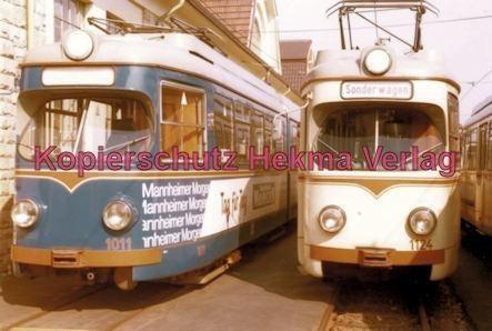 Ludwigshafen Rhein-Haardtbahn - Depot Bad Dürkheim - Wagen Nr. 1011 und Nr. 1124