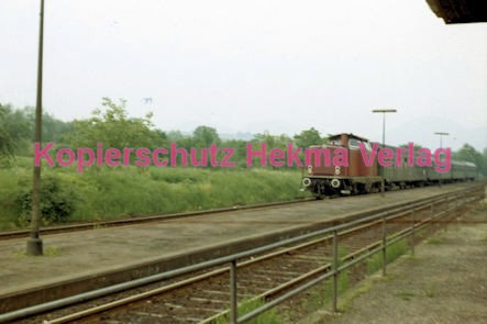 Godramstein/Pfalz Eisenbahn - Bahnhof Godramstein - Lok V 60 805 - Bild 3
