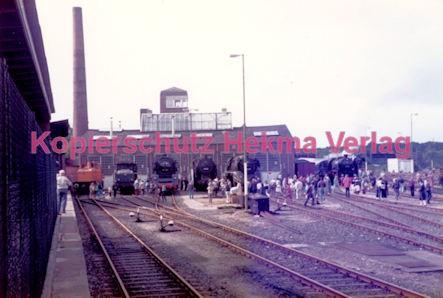 Frankfurt Eisenbahn - Lokschau - Hafengelände Hanauer Landstr. - Lokomotiven