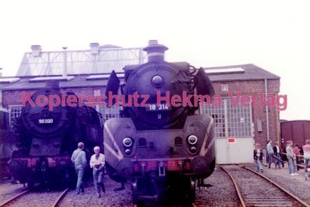 Frankfurt Eisenbahn - Lokschau - Hafengelände Hanauer Landstr. - Lok 95 020 und Lok 18 314