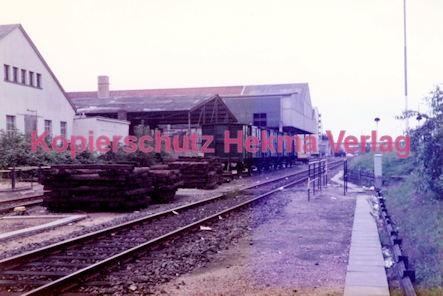 Frankfurt Eisenbahn - Lokschau - Hafengelände Hanauer Landstr. - Übersicht