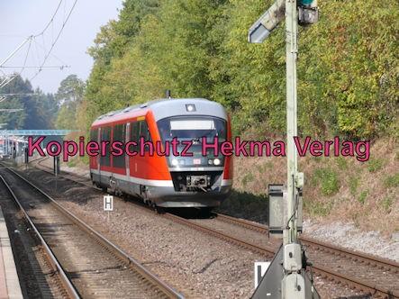 Karlsruhe Straßenbahn - Straßenbahn Wörth - Haltestelle Badallee - S5 Zug 847 642 608