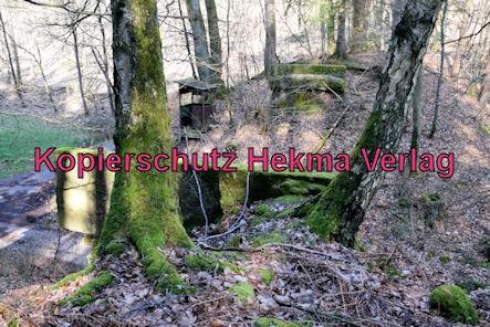 Wasgenwaldbahn - Braunthal - Brückenreste im Wald