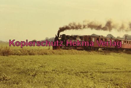 Mittelbadische Eisenbahn A G - Bw. Schwarzach - Lok MEG 101