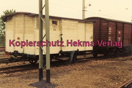 Viernheim Rhein-Neckar DGEG Eisenbahnmuseum - OEG-301