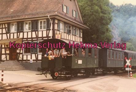 Achertalbahn - Bahnhof Furschenbach - Zug