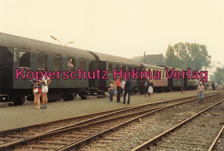 Kaiserstuhlbahn - Rebenbummler - Zug mit Lok 384 im Bahnhof