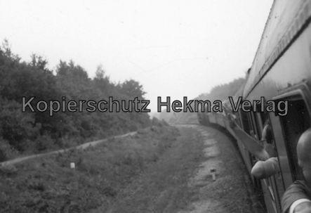 Rheingoldzug von Düsseldorf nach Arnheim - Bahnhof Nijmegen