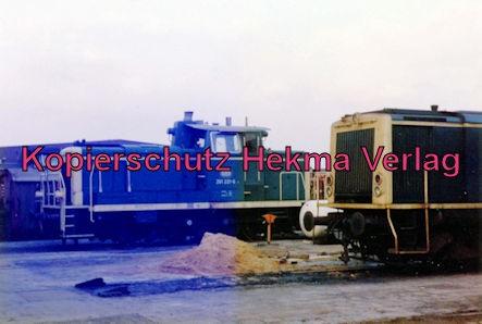 Kaiserslautern Eisenbahn - Bw Kaiserslautern - Lok 251 221-6