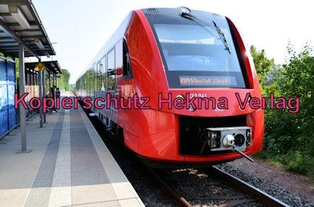 Bad Dürkheim Eisenbahn - Bahnhaltepunkt Bad Dürkheim-Trift - RB45 - 622 041