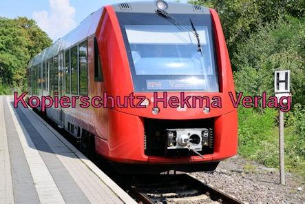 Eisenberg Eisenbahn - Eisenberg Bahnhof - Zug RB45 - 623 013