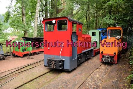 Stumpfwaldbahn Eiswoog Pfalz Eisenbahn - Bahnhof Eiswoog - Feldbahn