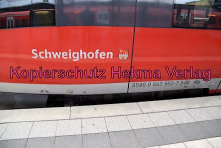 Neustadt Wstr. Eisenbahn - Neustadt Hbf - RB53 - 643 (502) 513 - Schweighofen