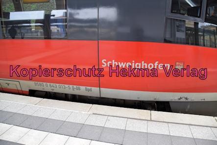 Neustadt Wstr. Eisenbahn - Neustadt Hbf - RB53 - 643 013-5 - Schweighofen