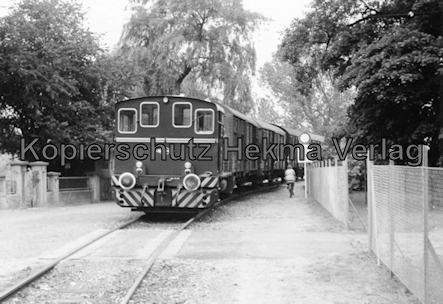 Osthannoversche Eisenbahn A.G. - Bahnhof Celle - Triebwagen