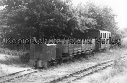 Holm Seppensen - Kleinbahn (Feldbahn) - Verein Deinste - Bahnhof Deinste Klb - Lok mit Wagen
