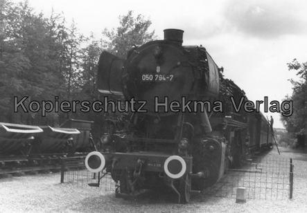 Märchenwald Tolk bei Schleswig - Tolk - Lok 050 794-7